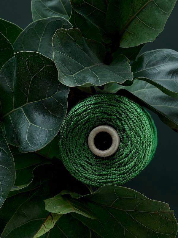 The Green Thread_010_vn