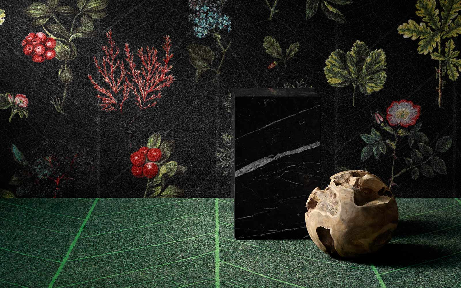 pom_nature_leaf-skeleton_botanic-garden_web