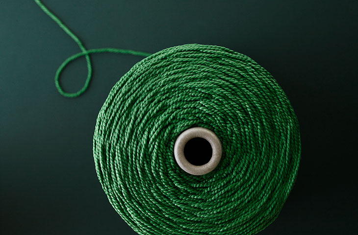 pom_the-green-thread_07