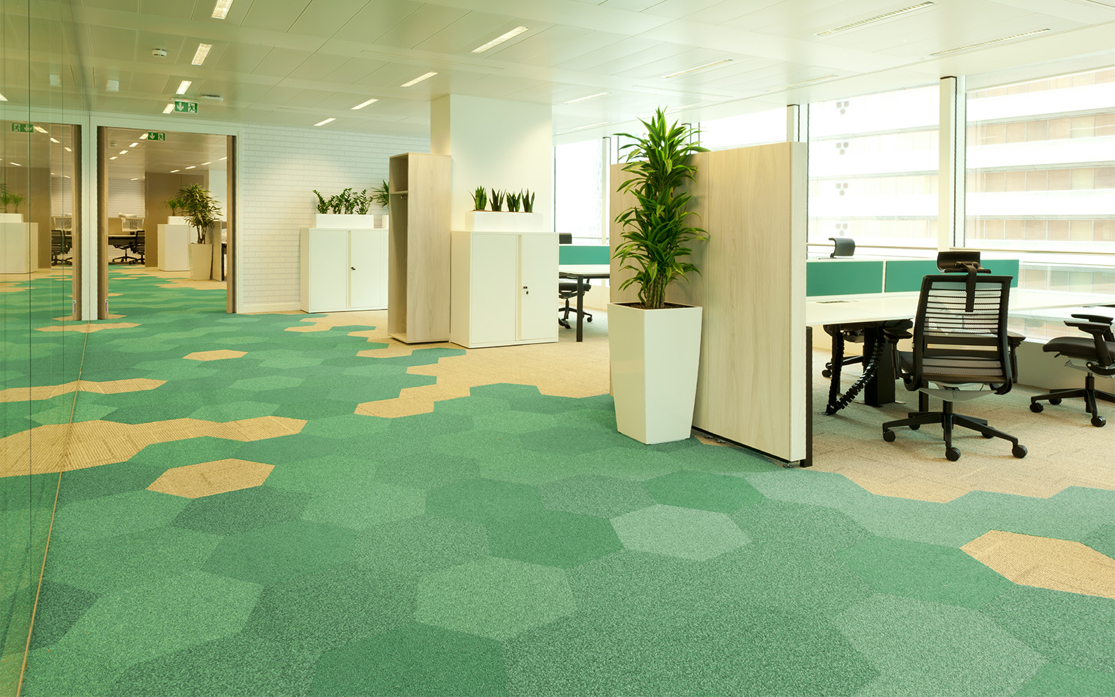 Hexagon-shaped-carpet-tiles-in-an-office