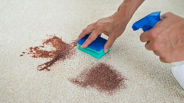 A demonstration of how to get stains out of your carpet