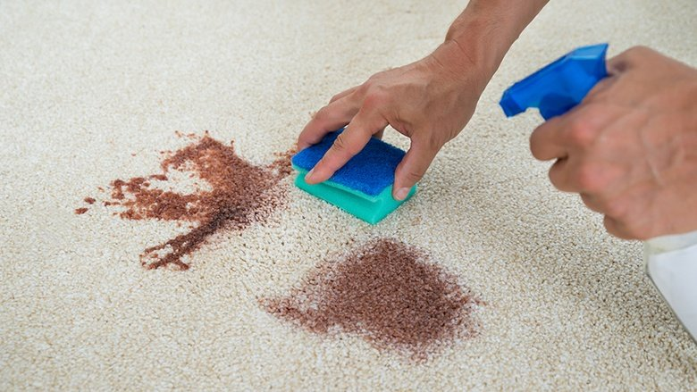 How To Get Blood Out Of Carpet The